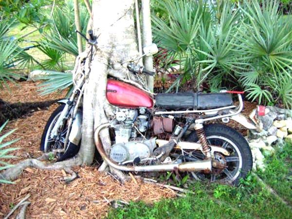 Já restaurou uma moto?