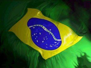 Lula, desmatamento zero e os carecas