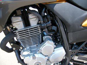 Foto: Motor CB 300 - Bitenca