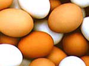 Casca de ovo e hidrogênio