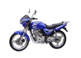 Dayang pode construir montadora de motos no Pará