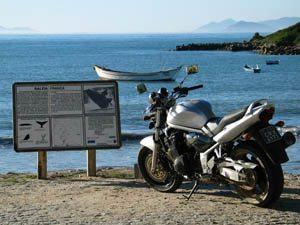 Foto: Suzuki Bandit 1200