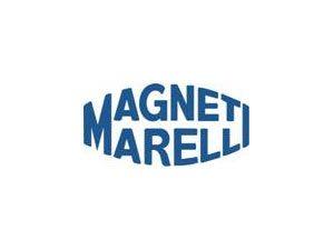 Tecnologia Flexfuel Da Magneti Marelli Marca Presença em Evento Internacional de Biocombustíveis