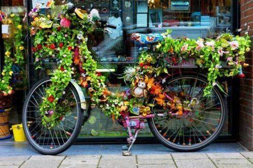 De bike pela Holanda: um programa interessante