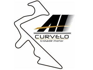 Logo_AICurvelo_300x225