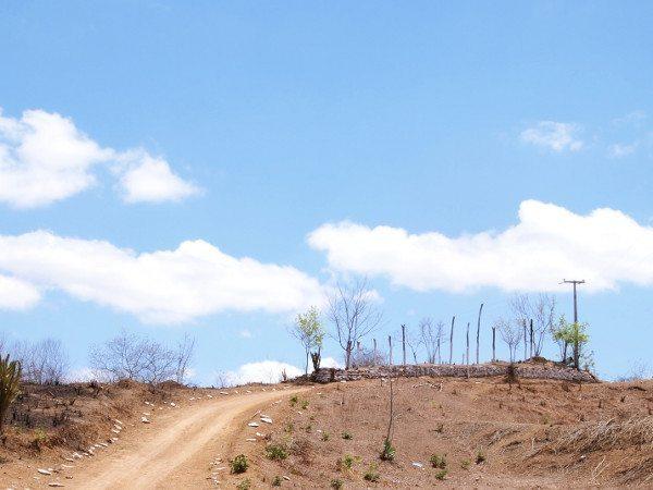 As madeiras são o que restou da casa do Beato no topo da colina