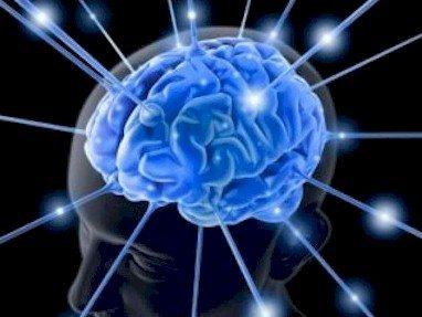 Memoria_cerebro