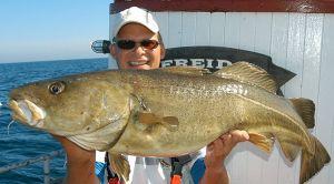 Além da estrada, a pesca é um dos grandes atrativos turísticos
