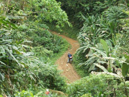 A dificuldade de acesso conserva intocada a floresta nativa; espetacular