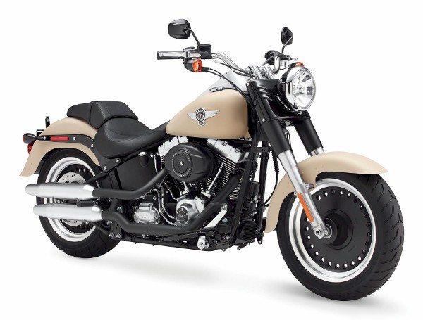 Harley-Davidson Fat Boy Special 2015