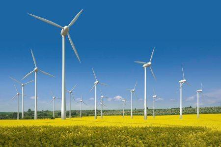 Energia eólica está nos planos da empresa
