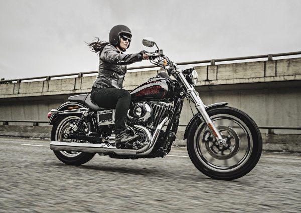 Nova Harley-Davidson Low Rider
