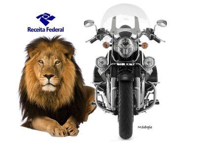 Fique tranquilo que o leão é manso