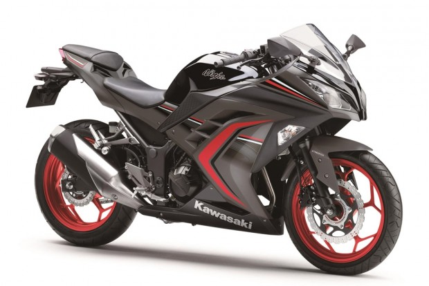Ninja 300 ABS – Metallic Flat Raw Greystone