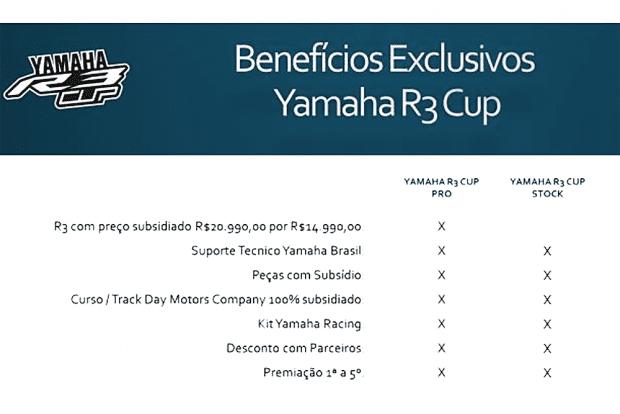 yamaha-r3-3
