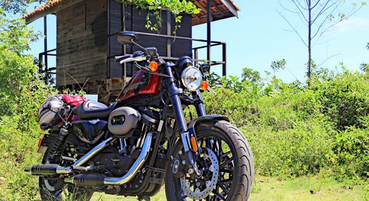 sportster-xl-1200-cx-roadster-5
